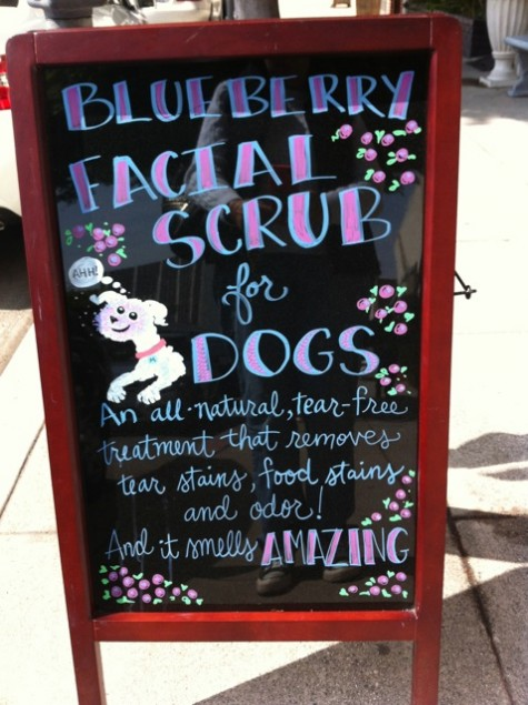Beverly Hills facials for dogs