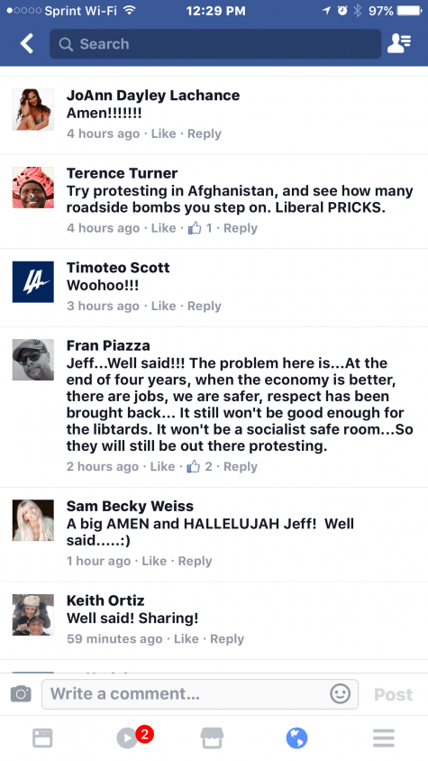 Fran Piazza Reseda Neighborhood Council writes a facebook post about libtards